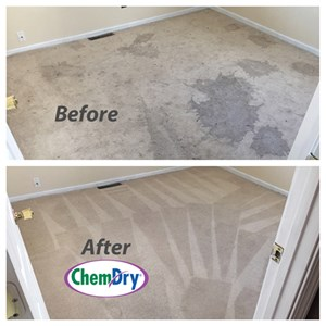 Carpet Cleaning South Bend IN
