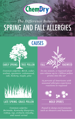 Fall Allergies versus Spring Allergies