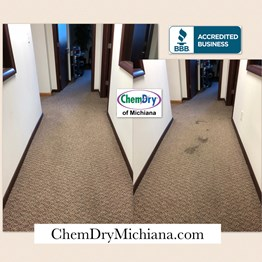 Chem-Dry Carpet Cleaning Mishawaka