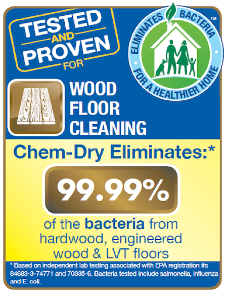 Wood Floor Cleaning Removes 99.99% Bacteria